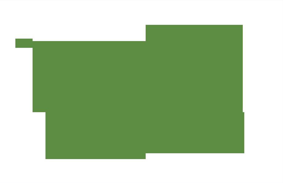 logo XLZ